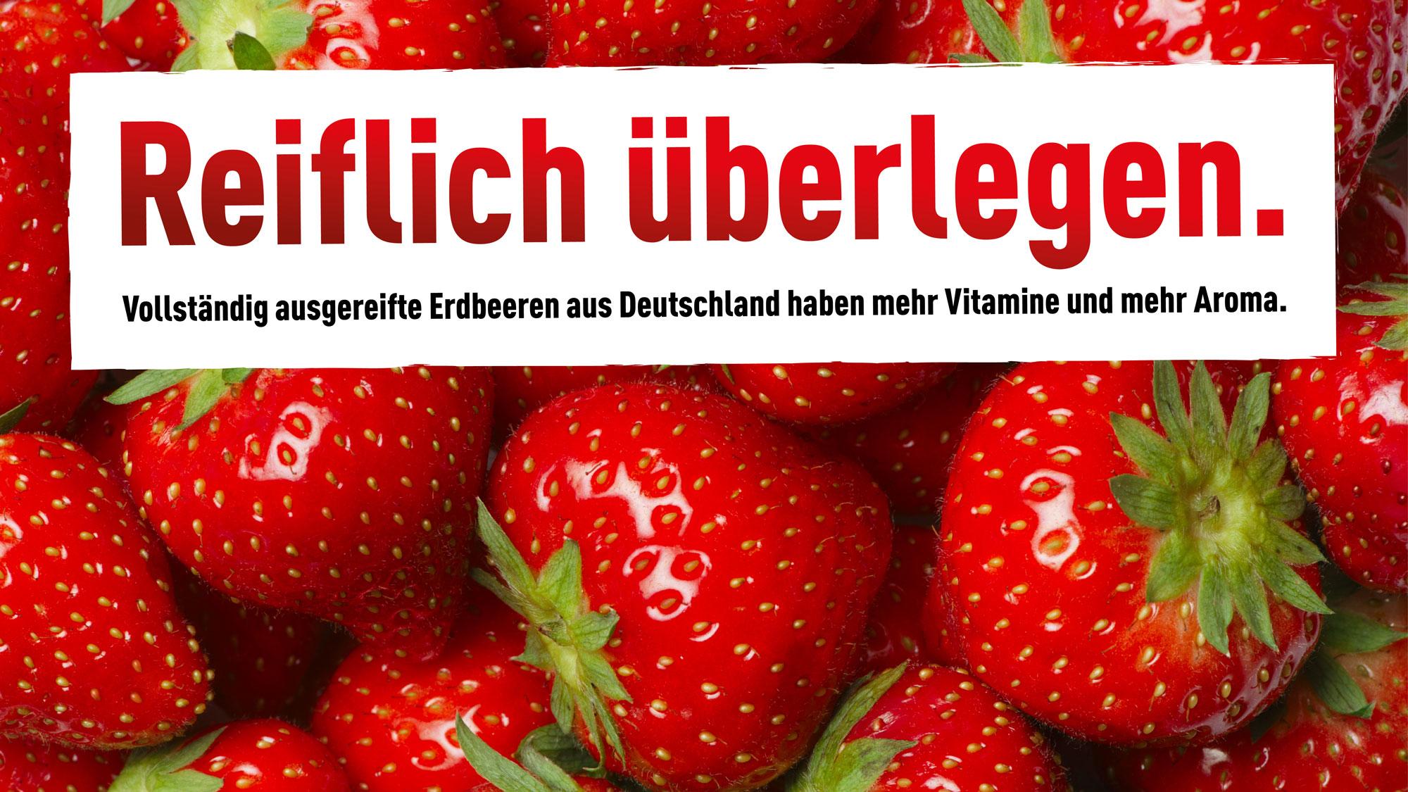 deutsches obst und gemüse | deutschland - mein garten., Gartengerate ideen